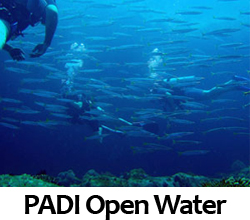 PADI Open Water Diver - GS-Diving Course