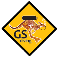 GS-Diving